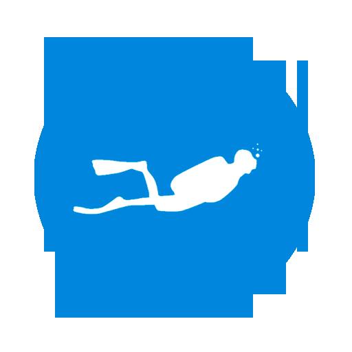 icono-1-diveiscool