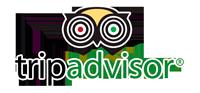 logo-tripadvisor-dive-is-cool